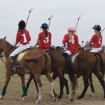 Learning To Play Polo