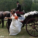 Integrating Into The World Of The Amish