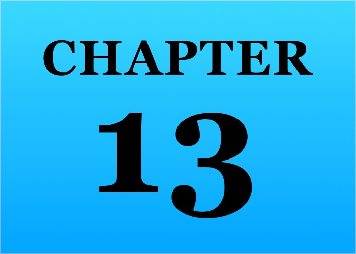 Key Elements Chapter 13 bankruptcy plan